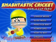 Smashtastic Cricket